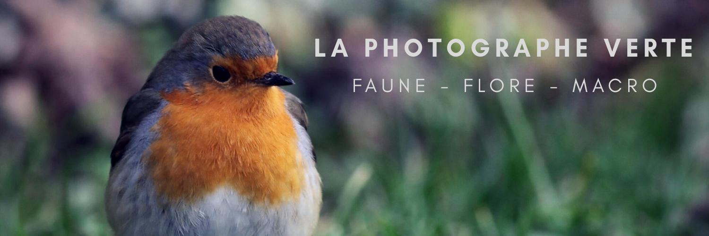 logo de La Photographe Verte, photographe nature, flore et macro